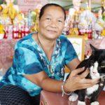 ชาวบ้านแผงหวยเฮ เจ้าโทนแมวให้โชคของแม่ตะเคียน กลับมาวัดใหม่โคกมะรุมแล้ว